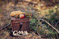 Todavía vida de la comida campestre del otoño Fotos de archivo