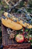 Todavía vida de la comida campestre del otoño Imagenes de archivo