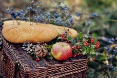 Todavía vida de la comida campestre del otoño Fotografía de archivo libre de regalías