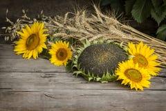 Todavía vida de la cosecha del verano Fotografía de archivo