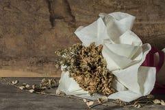 Todavía vida de la flor secada del ramo Foto de archivo