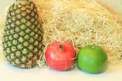Todavía vida de la fruta apetitosa, piña, granada, limón, manzana, pera, kiwi, pomelo, longan, largo-kong Imágenes de archivo libres de regalías