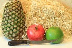 Todavía vida de la fruta apetitosa, piña, granada, limón, manzana, pera, kiwi, pomelo, longan, largo-kong Fotos de archivo libres de regalías