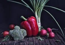 Todavía vida de la pimienta roja, del rábano, del tomate, de cebollas verdes y del cabba Fotos de archivo