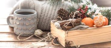Todavía vida de las decoraciones de la Navidad, un cuenco hermoso de la fruta a Imágenes de archivo libres de regalías