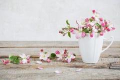 Todavía vida de las flores de la manzana Foto de archivo libre de regalías