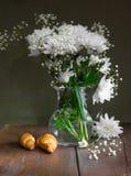 Todavía vida de las flores de los crisantemos blancos Foto de archivo libre de regalías