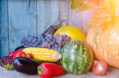 Todavía vida de las verduras del otoño Fotografía de archivo libre de regalías