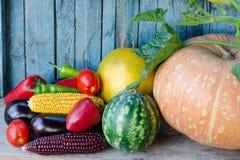 Todavía vida de las verduras del otoño: melón y sandía, maíz, berenjena, pimientas, tomates Fotos de archivo libres de regalías