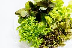 Todavía vida de las verduras frescas Foto de archivo libre de regalías