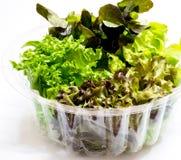 Todavía vida de las verduras frescas Fotos de archivo