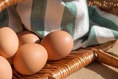 Todavía vida de los huevos del pollo Fotos de archivo