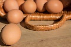 Todavía vida de los huevos del pollo Copie el espacio Fotos de archivo libres de regalías