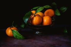 Todavía vida de mandarinas con las hojas foto de archivo libre de regalías