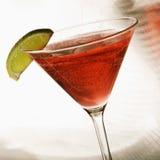 Todavía vida de martini. Fotografía de archivo libre de regalías