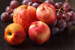 Todavía vida de melocotones de manzanas y de uvas Imagen de archivo libre de regalías