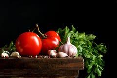 Todavía vida de tomates, del ajo y del perejil en los tableros de madera En un fondo negro Fotos de archivo libres de regalías