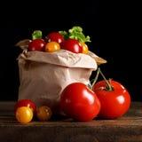 Todavía vida de tomates, del ajo y del perejil en los tableros de madera En un fondo negro Fotografía de archivo