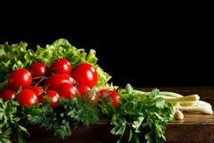 Todavía vida de tomates, del ajo y del perejil en los tableros de madera En un fondo negro Fotografía de archivo libre de regalías