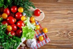 Todavía vida de tomates, del ajo y del perejil frescos en los tableros de madera Imagen de archivo libre de regalías