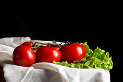 Todavía vida de tomates y del perejil en los tableros de madera En un fondo negro Imágenes de archivo libres de regalías