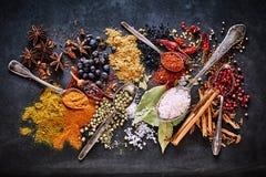 Todavía vida de una variedad de especias culinarias secadas Fotografía de archivo