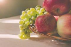 Todavía vida de uvas y de manzanas, encendida por el sol Imagen de archivo libre de regalías