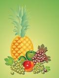 Todavía vida de varias frutas. Imagen de archivo libre de regalías