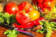 Todavía vida de verduras adobadas y frescas Fotografía de archivo libre de regalías