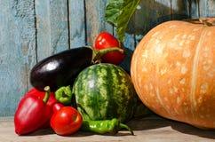 Todavía vida de verduras: calabaza, sandía, berenjena, pimientas, tomates en el viejo fondo Foto de archivo libre de regalías