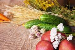 Todavía vida de verduras en el despido Fotografía de archivo