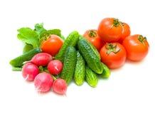 Todavía vida de verduras frescas Fotos de archivo libres de regalías