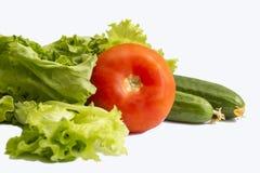 Todavía vida de verduras frescas Imágenes de archivo libres de regalías