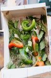 Todavía vida de verduras frescas y de especias en las esteras de la paja Fotos de archivo libres de regalías