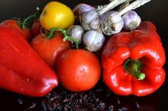 Todavía vida de verduras frescas y del bérbero secado Foto de archivo libre de regalías