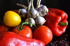 Todavía vida de verduras frescas y del bérbero secado Fotografía de archivo libre de regalías