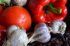 Todavía vida de verduras frescas y del bérbero secado Imagen de archivo