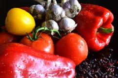 Todavía vida de verduras frescas y del bérbero secado Fotografía de archivo