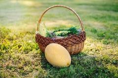 todavía vida de verduras y de frutas coloridas maduras en cesta afuera en hierba el día de verano Imágenes de archivo libres de regalías