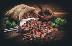 Todavía vida del cacao Imagen de archivo libre de regalías