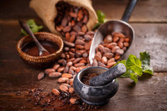 Todavía vida del cacao de tierra Fotografía de archivo