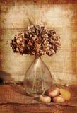 Todavía vida del flores Imágenes de archivo libres de regalías