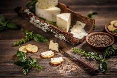Todavía vida del queso Foto de archivo