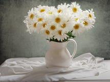Todavía vida del ramo de flores de la margarita foto de archivo libre de regalías