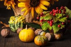 Todavía vida en colores del otoño Fotos de archivo libres de regalías