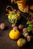 Todavía vida en colores del otoño Foto de archivo