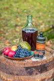 Todavía vida en el barril del roble de otoño de la fruta y del vino rojo Imagen de archivo