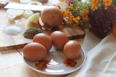 Todavía vida 1 Huevos Foto de archivo libre de regalías