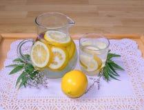 Todavía vida, jarro y vidrio con limonada en una bandeja imagen de archivo