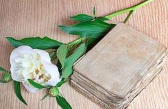 Todavía vida: libro antiguo y flor blanca de una peonía Foto de archivo libre de regalías